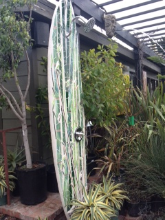 Fun blog about all things laguna beach interesting for Diy outdoor shower surfboard